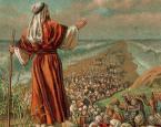 Власть еврейского народа